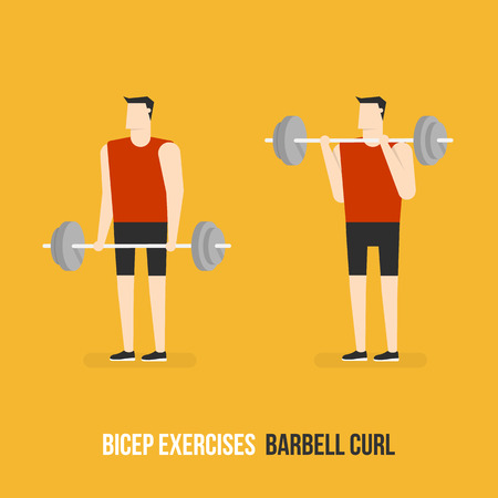 bicep curls: Bicep Exercises. Barbell Curl. Flat Design Bodybuilder Character Lifting Barbell.