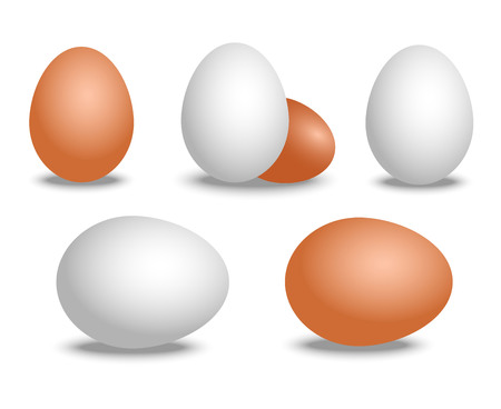 Vector 3d realistic white and brown eggs. Isolated eggs with shadow on white background. Eggs mockup for your Easter poster Stock Vector - 94512575