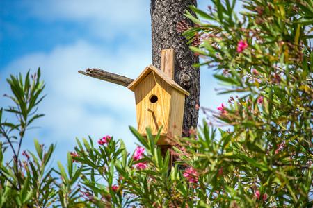 Birdhouse on a tree.