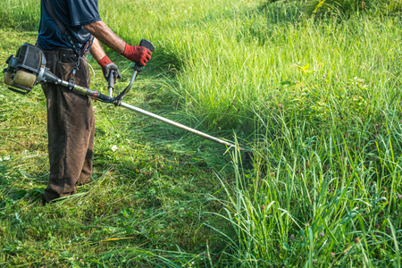 The gardener cutting grass by lawn mower. Standard-Bild