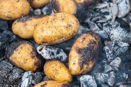 cooking potatoes in the fire. Potatoes thrown in ashes.