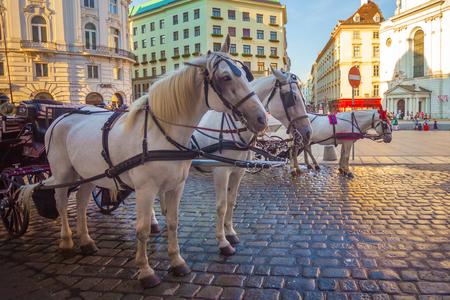 Horse-drawn carriage or Fiaker, popular tourist attraction, on Michaelerplatz in Vienna, Austria.