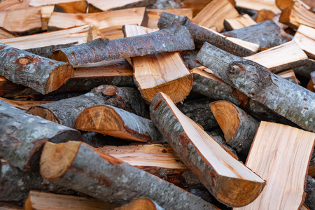 Preparation of firewood for the winter. firewood background, Stacks of firewood in the forest. Pile of firewood