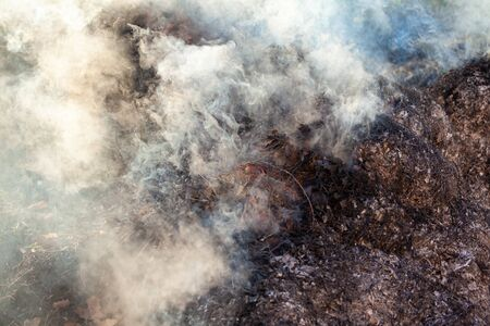Burning grass and leaves, fire while cleaning the garden. Voluminous smoke. Nature. Фото со стока