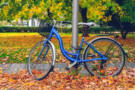 bicycle attached to a pillar in Vienna Park in autumn time, yellow leaves on the ground Banco de Imagens