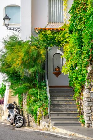 plant on the wall of privat houses in Amalfi. Italy. Travel.