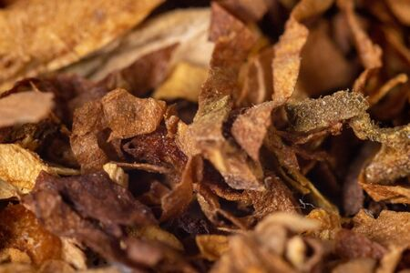 A pile of freshly cut tobacco texture in the background. Closeup