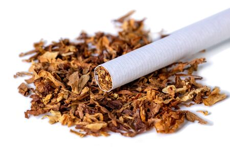 dried smoking tobacco Isolated on a white background. Close up.