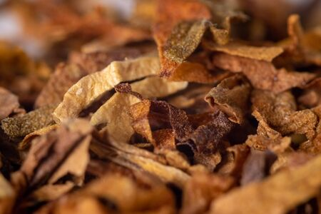 A pile of freshly cut tobacco texture in the background. Closeup view.