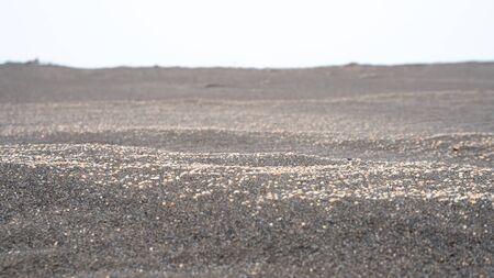 black sand on the Black Sea coast in the city of Poti, Georgia 版權商用圖片