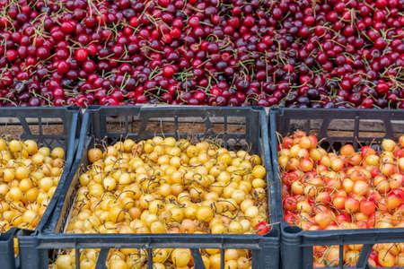Fresh and tasty natural cherries in a market stall, fruit Reklamní fotografie