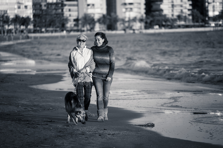 Happy senior mother her adult daughter and german shepard dog spending time together walking on beach at sunset light in Happy family moments Pet animals benefits Dog friendly tourism and retirement.