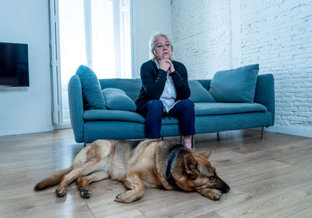 Depressed senior old woman crying on couch with pet dog as only Companion. Sad and tired widower amid COVID-19 pandemic. Coronavirus death, lockdown, social distancing and Mental health. Standard-Bild