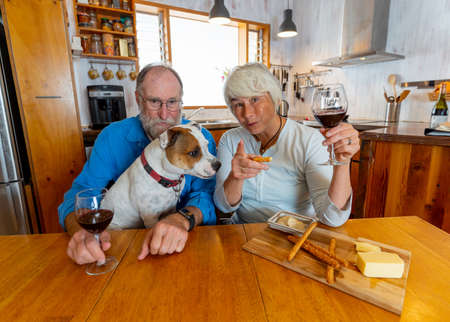 COVID-19 Stay connected. Happy senior couple with pet dog and wine video calling friends on laptop or online chatting with family celebrating easing of coronavirus restrictions lockdown. Hope concept.