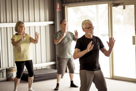 Group of seniors in Tai Chi class exercising in an active retirement lifestyle. Mental and physical health benefits of exercise and fitness in elderly people. Senior health care and wellbeing concept. Banco de Imagens - 157047359