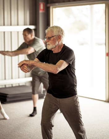 Group of seniors in Tai Chi class exercising in an active retirement lifestyle. Mental and physical health benefits of exercise and fitness in elderly people. Senior health care and wellbeing concept. Banco de Imagens - 157047418