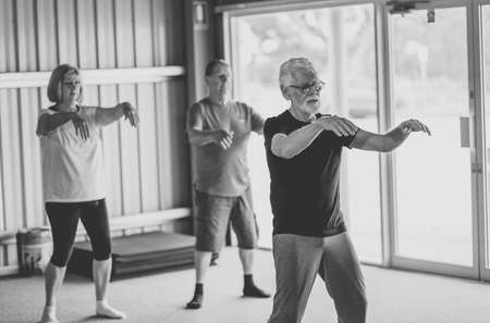 Group of seniors in Tai Chi class exercising in an active retirement lifestyle. Mental and physical health benefits of exercise and fitness in elderly people. Senior health care and wellbeing concept. Banco de Imagens - 157047478