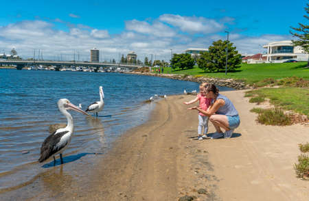 Happy mother and daughter having fun feeding the pelicans by the lake. Portrait of cute little girl with mum in the park. Love, Family time, motherhood, childhood and outdoors concept.