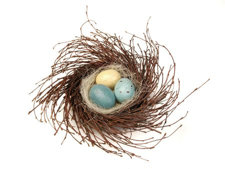 Eggs in a nest isolated
