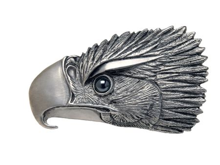 american silver eagle: Eagle head Stock Photo