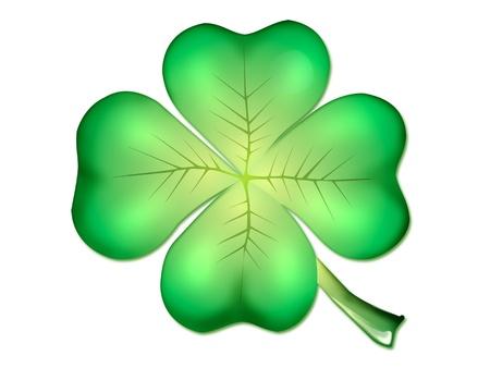 macro leaf: Quatrefoil isolated on white background Stock Photo