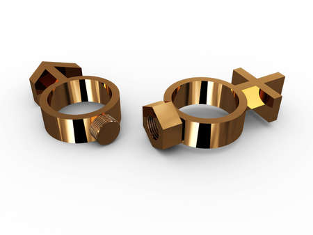 Rings with a bolt and nut and gender. 3D