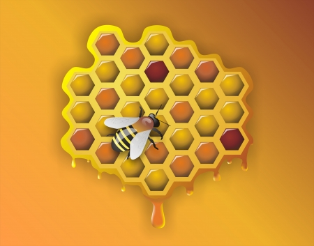 mead: Working Bee and Honeycomb - Illustration