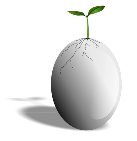 New Life from egg- Stock Image Stock Photo