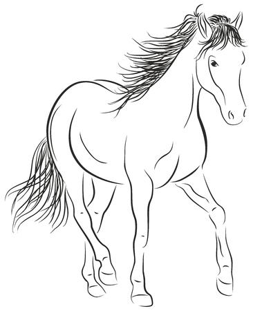 Calligraphic Horse - Stock Illustration