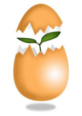 New life from egg - Stock Illustration Stock Photo