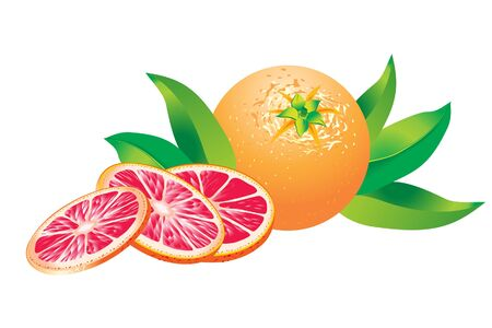 grapefruits: Pink grapefruits with leafs on white background. Vector illustration