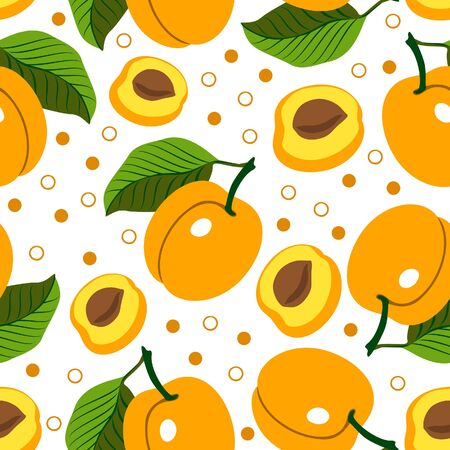 apricots: Apricot. Vector seamless background with apricots on white background. Vegetarian. Elements for your design.Textile and wallpaper background. Series of food and drink and ingredients for cooking.