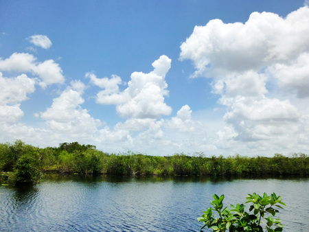 everglades national park: Everglades National Park