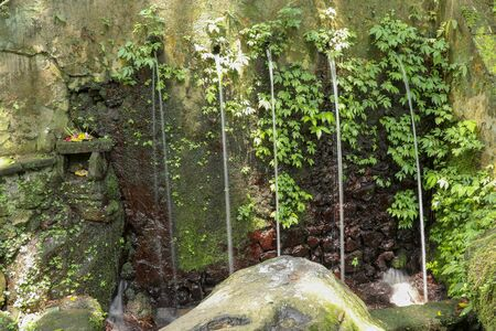 Sacred water springs in the Pakerisan Valley at the Tampaksiring Burial Complex. Gunung Kawi, Bali, Indonesia. Sacrifices to the Gods on the altar. Mecha and tropical vegetation grow on a rock wall.