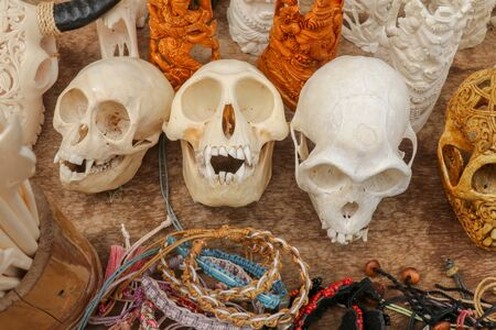 Ornaments carved into animal skulls. Handmade Balinese carvers. Beef bones, monkey skulls and beef cattle skulls. Souvenirs made of animal bones. Artwork of handy natives of Bali island, Indonesia. Imagens