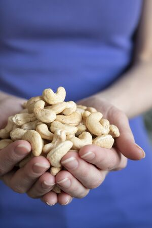 Cashew nut in the hands of women. The girl is holding a cashew nut in her hands, close-up. Stock Photo