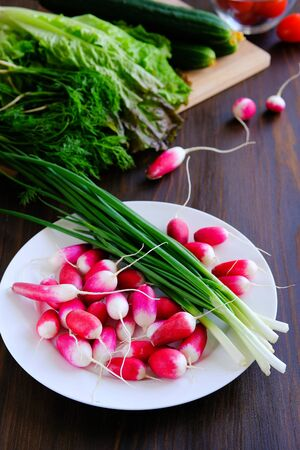 Radishes and green onions on a plate. Near dill, green salad. Vegetables from the garden. Natural organic agricultural products, vegetarianism. Marinating for the winter, harvesting. Family life.