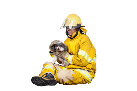 animal fight: firefighter, fireman rescued the pets from the fire, isolated on white Stock Photo