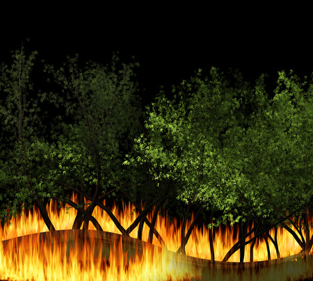 wildfire: 3D illustration forest fire burning, bushfire, wildfire close-up at night. a wildfire is an uncontrolled fire in an area of combustible vegetation.