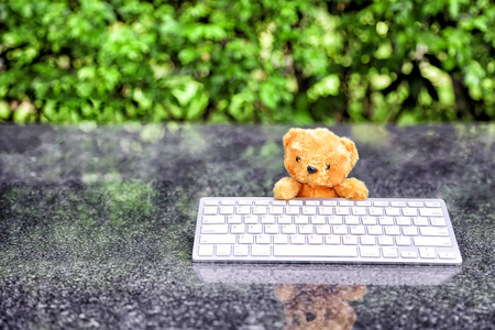 internet surfing: cute teddy bear with a wireless keyboard In the park., internet surfing or computer work concept.