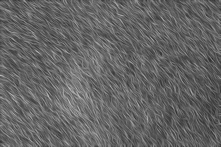 fur abstract background It looks like fur texture. Stok Fotoğraf