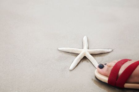 White finger starfish under a human foot over sand beach., Environmental protection concept.