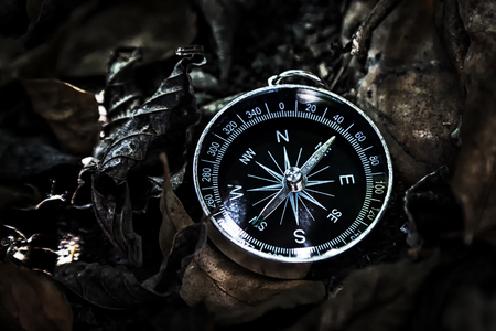 Magnetic compass lying on the ground, covered with fallen dry leaves in the jungle, In dark tone.