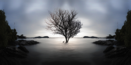 A lone dead tree and partially submerged in the sea on sunset., the concept of lonely, sadness, depressed and broken heart. Stockfoto