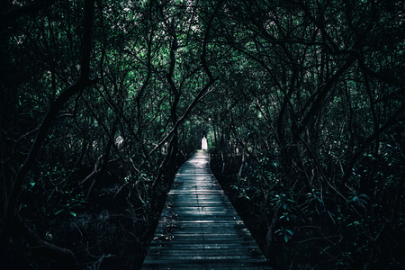 Horror scene of a scary woman., Mysterious long black hair women staying in white dress at end of old wooden bridge extended into the dark forest. Stockfoto