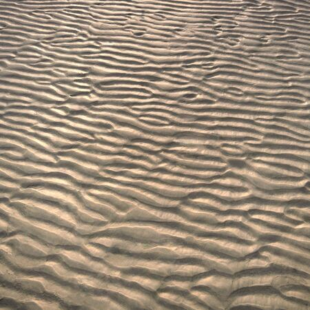 A wavy pattern in the sand. Natures pure land. photo