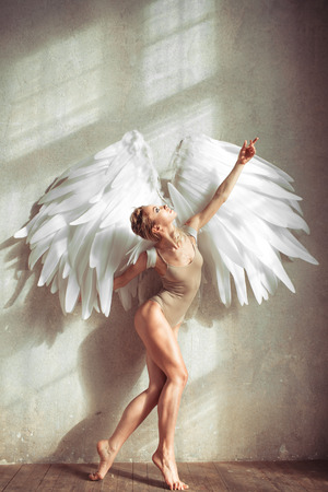glamour nude: female with wings posing in studio