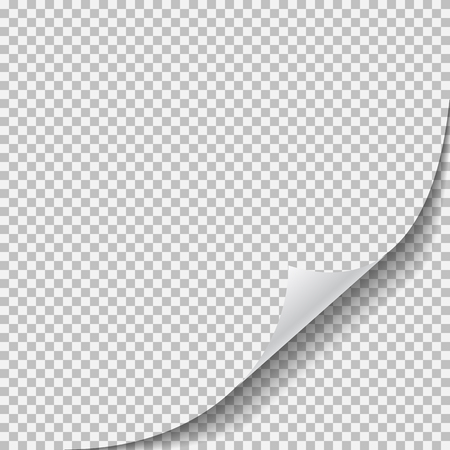 Blank transparent sheet of paper with page curl. isolated vector illustration on white background.