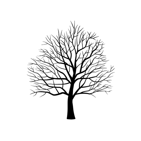 Isolated silhouette of bare tree without leaves on white background. Vector illustration.