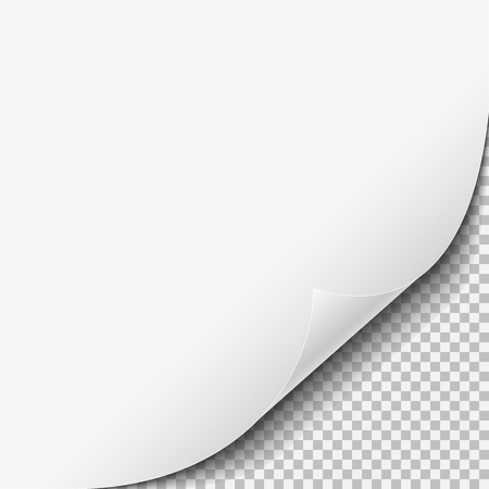 Wirbelnde Ecke des weißen leeren Blattes Papier mit Schatten auf transparentem Hintergrund. Vektor-illustration